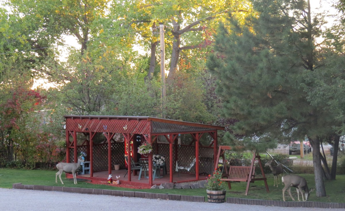 Guest Porch at Pines Motel